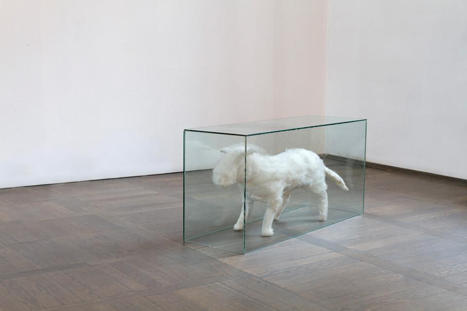 """""""Czysty piesek"""" to obiekt przedstawiający małego białego psa"""